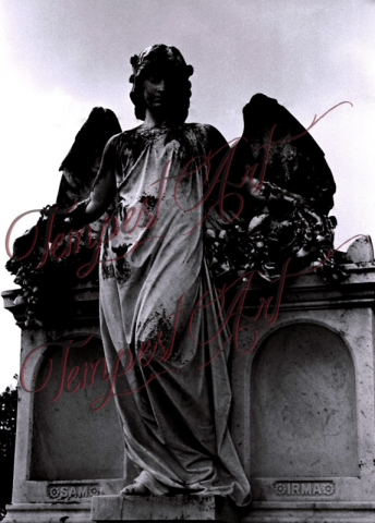 Guardianangel Tempest Art Nola New Orleans photography